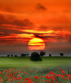 Paisajes al Sol